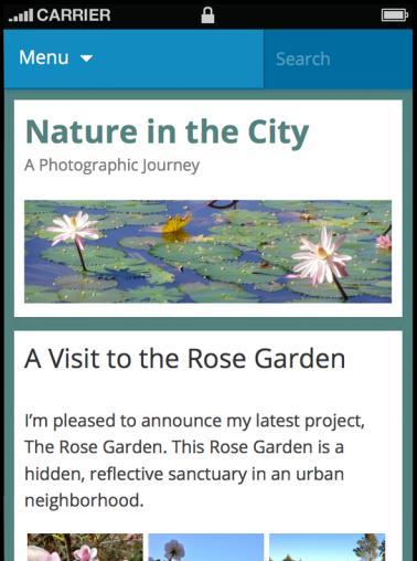 Отображение заголовков и фона сайта в мобильной теме