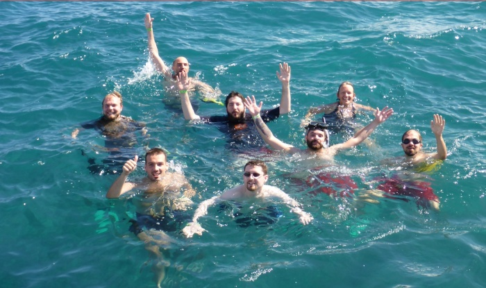 Eight automatticians swimming in the carribean