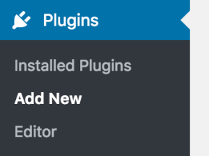 Plugins > Add New