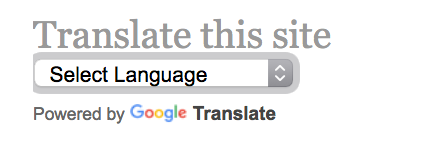 The Google Translate widget for WordPress