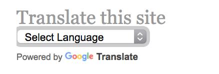 The Google Translate widget for WordPress